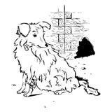 Cão com pé quebrado ilustração royalty free