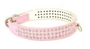 Cão cor-de-rosa do colar da forma fotografia de stock