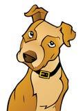 Cão curioso dos desenhos animados fotos de stock