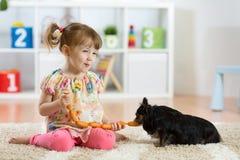 Cão da alimentação de crianças foto de stock royalty free