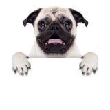 Cão da bandeira do cartaz imagens de stock royalty free