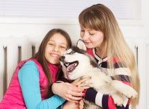 Cão da família e do cão de puxar trenós Siberian Imagens de Stock