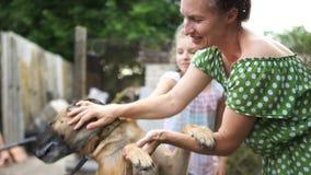 Cão da vila em uma trela e em sua senhora Jovem mulher que afaga direitos dos animais de proteção de um híbrido filme