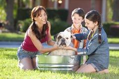 Cão de animal de estimação de lavagem da família em uma cuba de banho do estanho Imagem de Stock