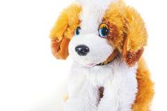 Cão de brinquedo bonito no fundo branco Fotografia de Stock Royalty Free