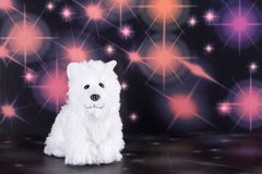 Cão de brinquedo branco bonito Fotos de Stock