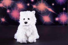Cão de brinquedo branco bonito Foto de Stock Royalty Free