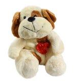 Cão de brinquedo do luxuoso Fotografia de Stock Royalty Free