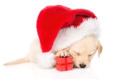 Cão de cachorrinho do golden retriever com presente e chapéu de Santa Isolado Imagem de Stock