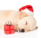 Cão de cachorrinho do golden retriever com presente e chapéu de Santa Isolado Imagem de Stock Royalty Free