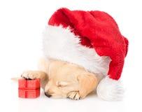 Cão de cachorrinho do golden retriever com presente e chapéu de Santa Isolado Imagens de Stock