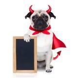 Cão de diabo de Dia das Bruxas fotografia de stock royalty free
