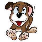 Cão de filhote de cachorro Fotografia de Stock