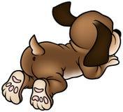 Cão de filhote de cachorro Foto de Stock Royalty Free