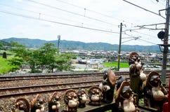 Cão de guaxinim japonês igualmente conhecido como o tanuki ao lado da trilha da caída Fotos de Stock Royalty Free