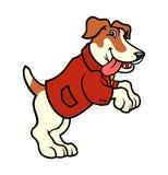 Cão de Jack russell no revestimento que está nos pés traseiros ilustração royalty free