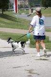 Cão de passeio da menina por Rio imagens de stock