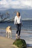 Cão de passeio da mulher. Foto de Stock Royalty Free