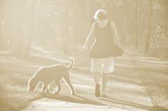 Cão de passeio da mulher macia sonhadora do fundo da luz do sepia nas madeiras foto de stock royalty free