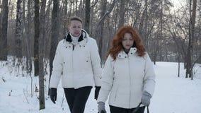 Cão de passeio dos povos da colheita no inverno filme