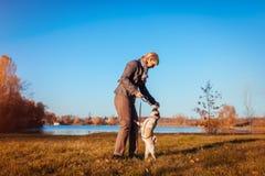 Cão de passeio mestre do pug no parque do outono pelo rio Animal de estimação de alimentação da mulher feliz O cão que salta para fotografia de stock