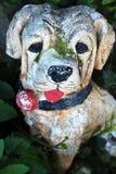 Cão de pedra na grama Fotografia de Stock Royalty Free