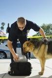 Cão de polícia que aspira o saco Fotos de Stock