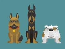 Cão de protetor 1 Fotografia de Stock Royalty Free