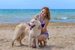 Cão de puxar trenós e menina Fotografia de Stock Royalty Free