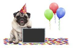 Cão de sorriso do pug da festa de anos Frolic, com a decoração do quadro-negro, dos confetes e dos balões foto de stock