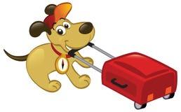 Cão de viagem que puxa uma bagagem Imagens de Stock