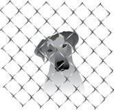 Cão dentro de uma cerca ou de uma gaiola Ilustração Royalty Free