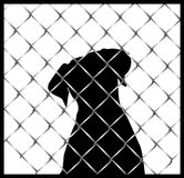 Cão dentro de uma silhueta da cerca ou da gaiola Fotos de Stock Royalty Free