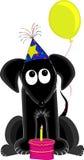 Cão do aniversário ilustração royalty free