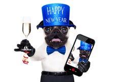 Cão do ano novo feliz Imagens de Stock Royalty Free