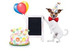 Cão do feliz aniversario Fotografia de Stock