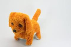 Cão do luxuoso Imagem de Stock