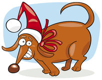 Cão do Natal Imagens de Stock