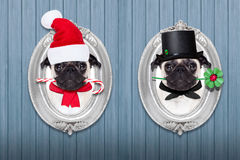 Cão do Natal como a vassoura de Papai Noel e de chaminé Foto de Stock
