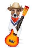 Cão do país Fotografia de Stock Royalty Free