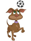 Cão do personagem de banda desenhada Fotos de Stock