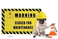 Cão do Pug com o capacete de segurança amarelo do construtor e sinal de aviso com o texto fechado para a manutenção fotografia de stock
