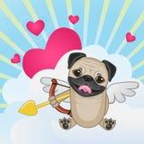 Cão do Pug do cupido Foto de Stock