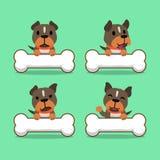 Cão do terrier de pitbull do personagem de banda desenhada com ossos grandes Imagens de Stock Royalty Free