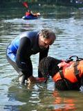 Cão do treinamento da água Fotografia de Stock Royalty Free