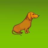 Cão do vermelho do vetor Foto de Stock Royalty Free