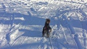 Cão do yorkshire terrier que corre através do animal de estimação da alegria do inverno da neve filme