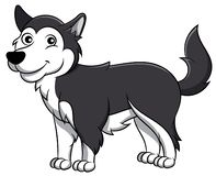 Cão dos desenhos animados do Malamute do Alasca ilustração stock