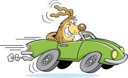 Cão dos desenhos animados que conduz um carro Imagens de Stock Royalty Free