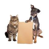 Cão e Cat With Blank Cardboard Sign fotografia de stock